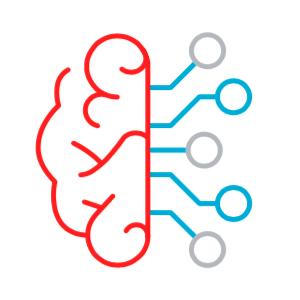 UMR Brain